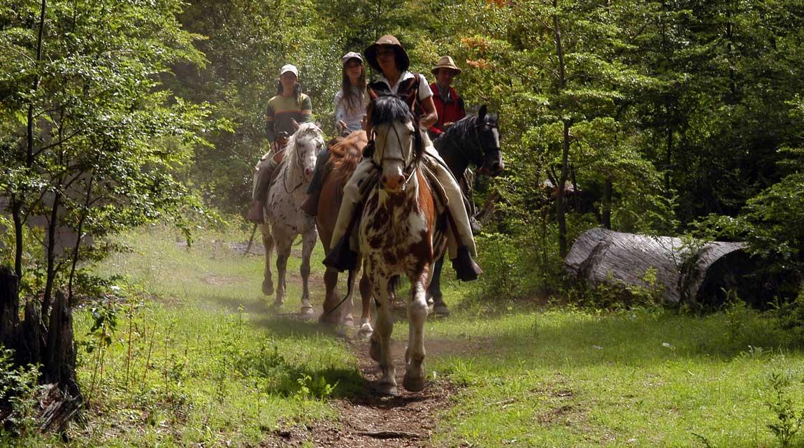 horseriding-peumahue-patagonia4