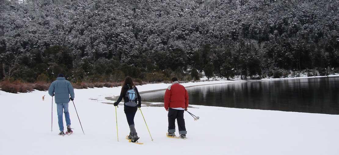 trekking-peumahue-patagonia2