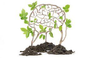 greenlife-blog-mental-psyche